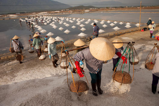 Workers gather salt into baskets and move it to larger piles where it is ready for transport.