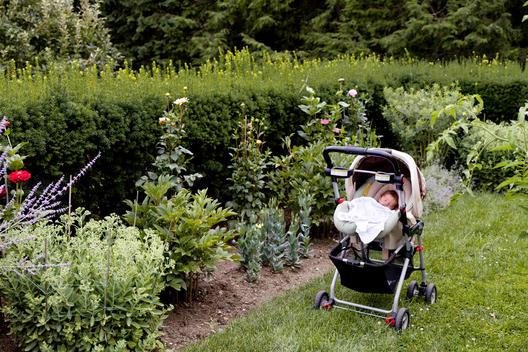 A baby sleeping in a stroller in a garden.
