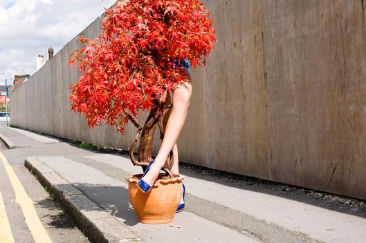 Woman Behind Tree
