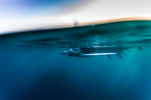 An underwater above and below the water look at a man laying on a surfboard at sunset