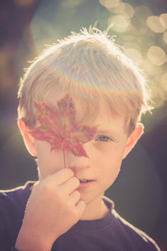 Portrait of boy covering one eye with autumn leaf