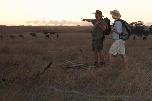 People watching wildlife on safari, Stellenbosch, South Africa