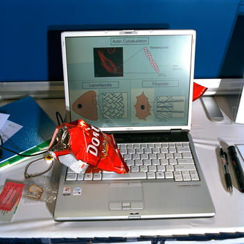 Laptop Computer With Science Presentation On It