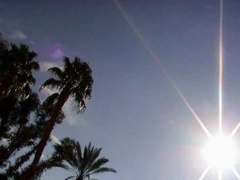L.A. Morning Sun