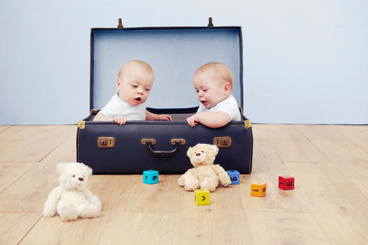 Two baby boys sitting in suitcase looking at toys