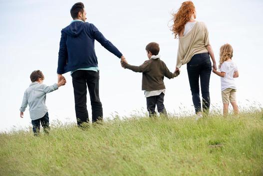 Family walking hand-in-hand in field, rear view