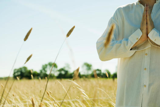 Man meditating in field with hands clasped in prayer position, cropped