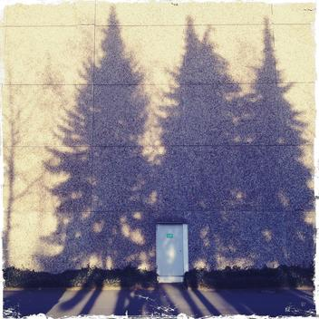 Plate construction, hotel, architecture, patterns, shadows of spruce, tree shadow