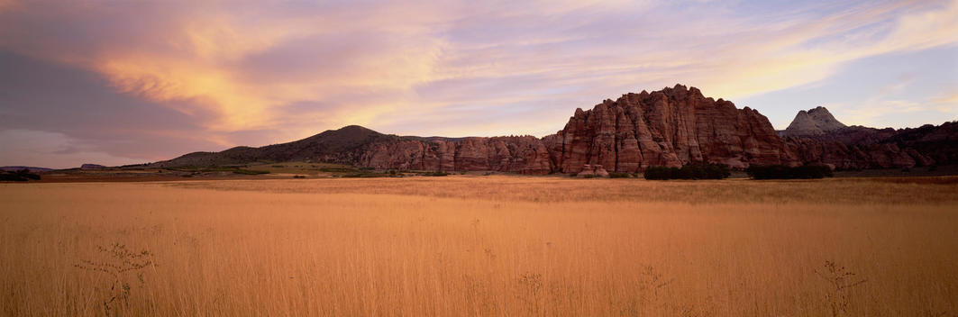Landscape Of Buffalo Grass And Mesas At Zion National Park, Utah