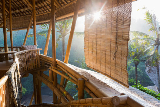 Sun shining on bamboo treehouse