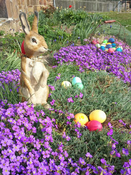 Easter, Easter eggs, Easter, Easter Bunny, Holiday, Tradition, Saxony, Germany, Aubretia
