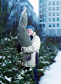 Man Hugging A Christmas Tree