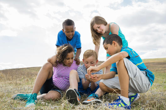 Schoolchildren exploring stick insect during field study