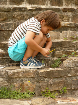 Young Boy Picking Flowers