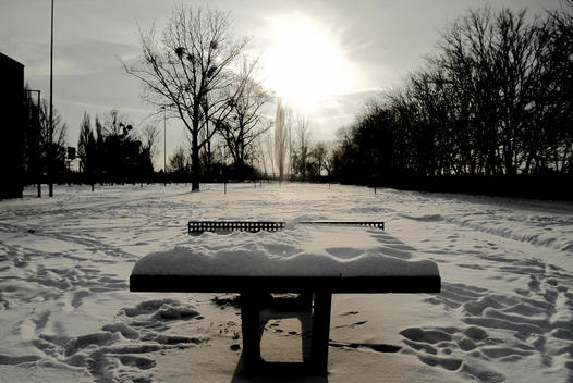 Ping Pong Table covered by snow