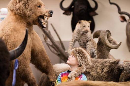 Boy wearing fur hat in natural history museum