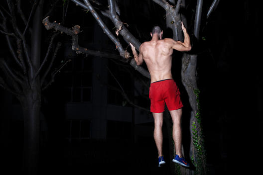 Athletic man exercising, using tree branch, at night