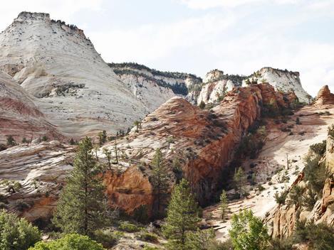 Zion Landscape, Zion National Park
