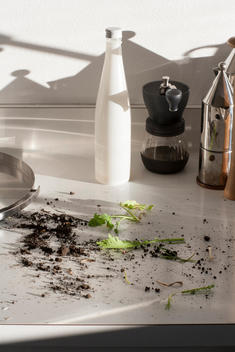 dirt, soil and plants on a kitchen countertop