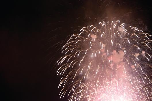 Fireworks in a night sky