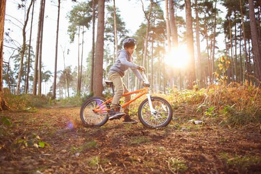 Boy riding his BMX bike through forest