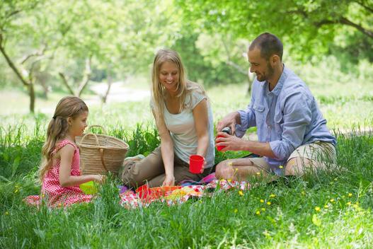 Family enjoying picnic outdoors