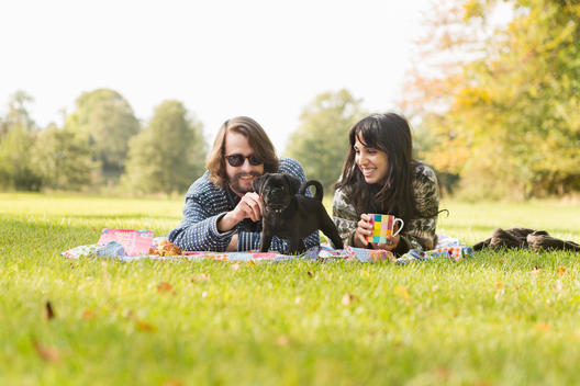 Happy young couple with puppy on picnic blanket in forest