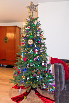 Chrsitmas trees and holiday d?cor inside apartments in NYC.