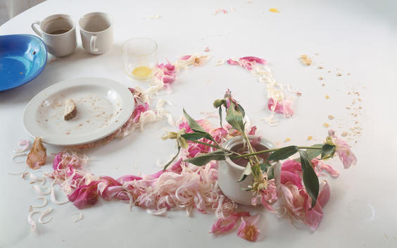Fallen Pink Peony Petals, White Formica Circular Table, White And Blue Dishes, Orange Debris