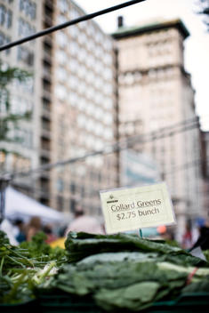 Farmers market on New York\'s Union Square