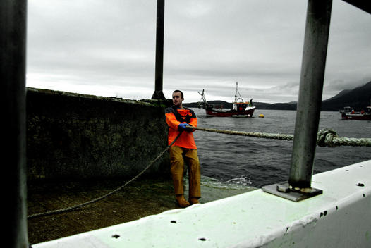 Scottish fisherman pulling a rope during the docking operations after a day fishing lobsters