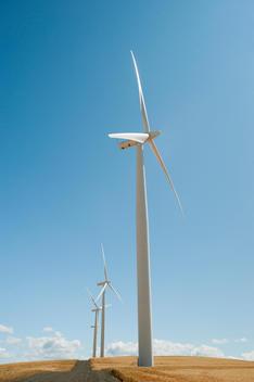 USA, Oregon, Wasco, Wind turbines along dirt road between wheat fields