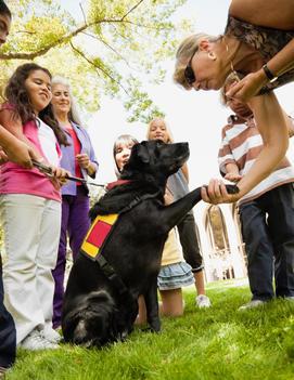 Children watching service dog shake hands with owner