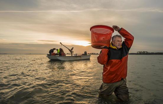 Caucasian fisherman carrying basket in water