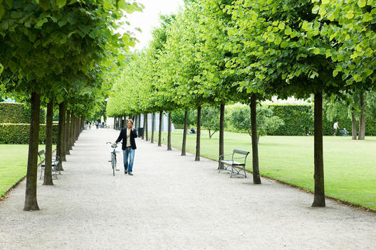 Man Walking With His Bicycle Along A Tree Lined Path, Kings Garden