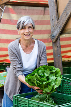 Portrait of smiling senior saleswoman offering butterhead lettuce at her vegetable stand