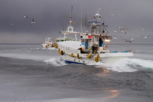 Fishing boat traveling in winter ocean