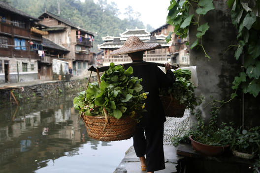 Villager Carrying Day\'S Harvest
