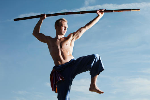Germany, Bavaria, Young man doing martial arts training with stick