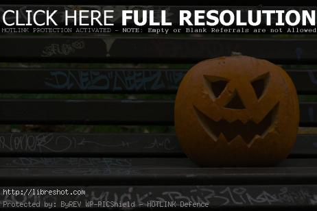 Halloween Pumpkin | Free Images For Commercial Use