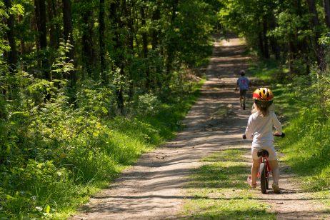 Free Image: Kids on a bike ride | Libreshot Public Domain Photos