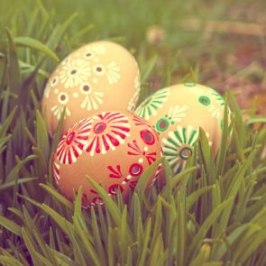 Grass and Eggs