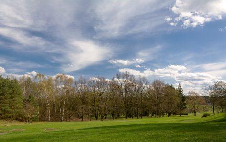 FREE IMAGE: Spring Landscape | Libreshot Public Domain Photos