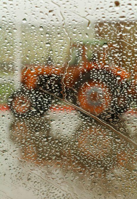 FREE IMAGE: Tractor in the rain | Libreshot Public Domain Photos
