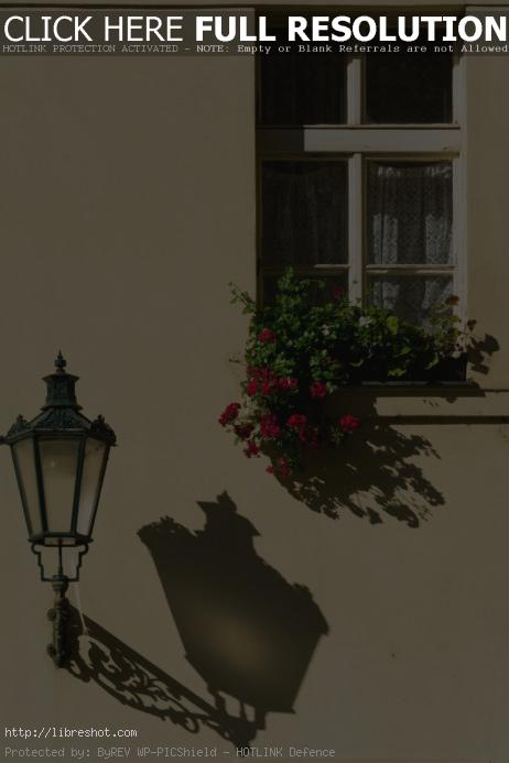Free image of Prague street lamp and window with flowers