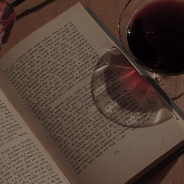 Book, wine and rose