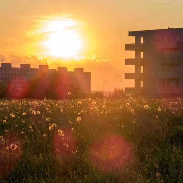 Sunset On A Panel Housing Estate In Prague