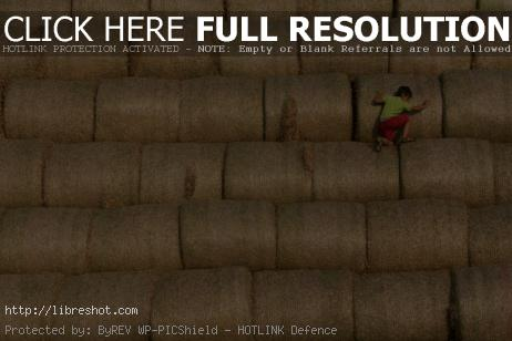 Free image of Climbing on stack of straw