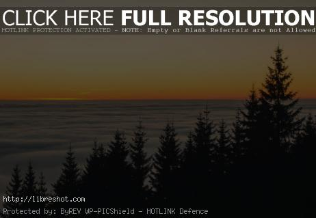 Free image of Sunset above the clouds and trees