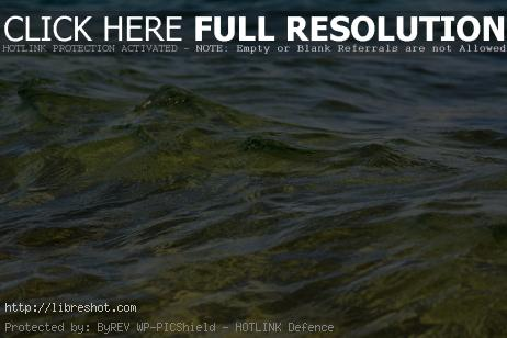 Free image of Sea waves (water surface)